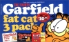 Garfield Fat Cat 3 Pack : Vol.04 (Garfield makes it Big / Rolls On / Out to Lunch)